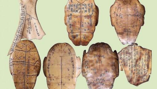 甲骨文發現120周年 破譯不足一半