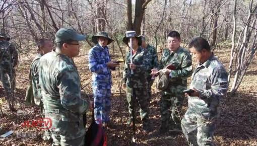 吉林省开展首次东北林区航空林分材积表编制地面样地调查