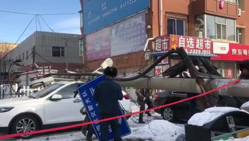 突发丨长春市升阳街附近一电线杆倒塌 两车被砸