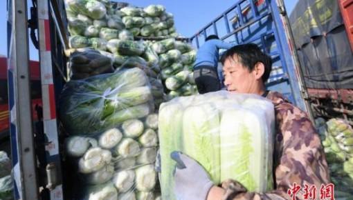 中国要求北方大城市做好冬季蔬菜储备 确保5~7天消费量