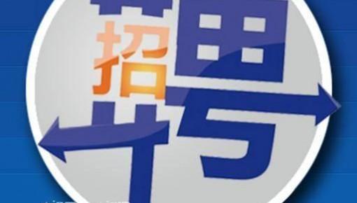 延吉市部分村党组织书记公开招聘啦