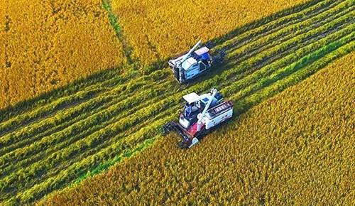 吉林省最新拟定17个高标准农田建设项目!有你家乡那儿吗?