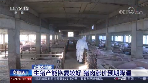農業農村部:生豬產能恢復較好 全國豬肉價格連續4周回落