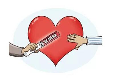 2018年中国器官捐献位居世界第二 移植质量不断提升