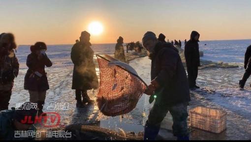 月亮湖今冬第一捞 头网拉出1600斤 大鱼翻腾出湖