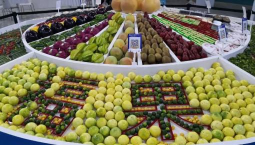 肉价、菜价、水果价,过年你关心的都在这里!
