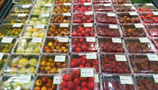 吉林省粮油价格平稳,蔬菜价格上升