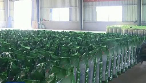 抓生产畅流通 确保春耕农资供应