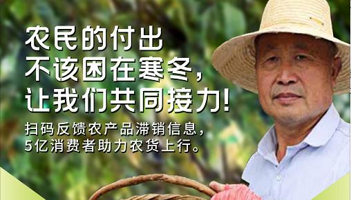 拼多多联合吉林网络广播电视台 全网征集农产品滞销信息