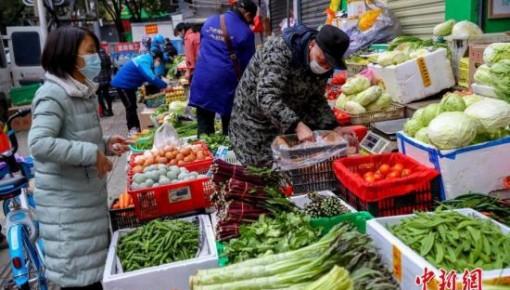 農業農村部:強化蔬菜等產品生產保供