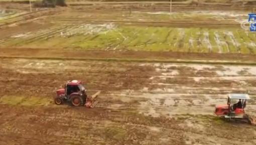 农业农村部:多措施确保全国早稻面积恢复增加