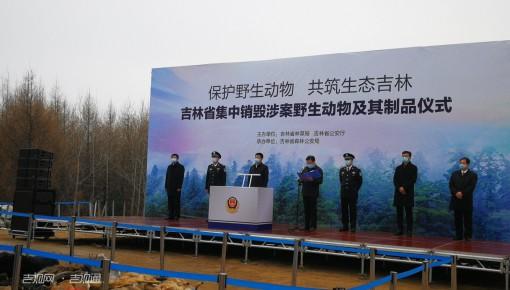 吉林省集中销毁一批涉案野生动物及其制品