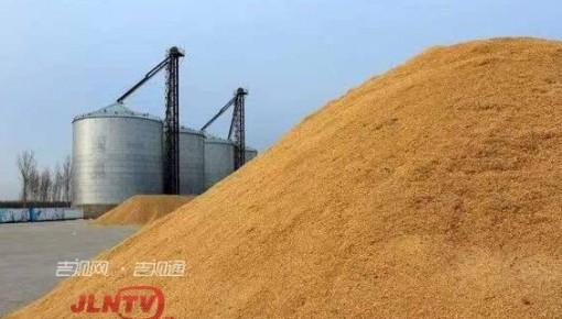 吉林省粮食储备充足 可满足全省人民一年口粮需求