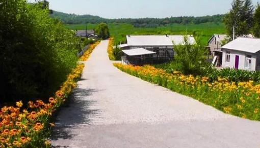 中央農辦、農業農村部部署推進村莊清潔行動春季戰役