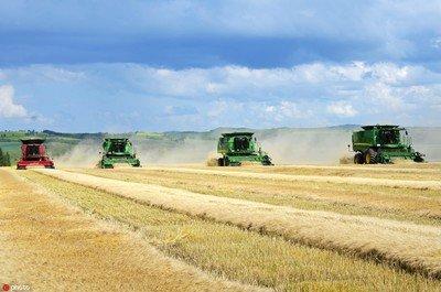 黑龙江今年粮食播种面积将超2.15亿亩