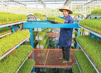 智慧農業顯身手  ?