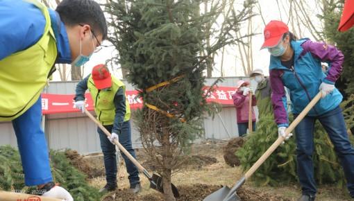 绿化长春 大美春城丨长春市全民义务植树活动火热进行