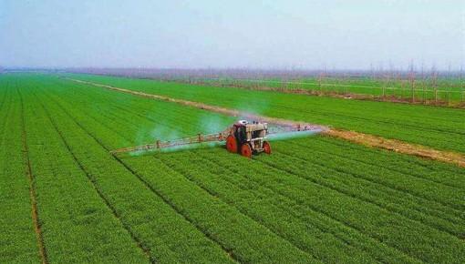 袁隆平:對實現雙季稻畝產1500公斤預期目標充滿信心