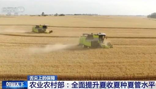 农业农村部:全面提升夏收夏种夏管水平