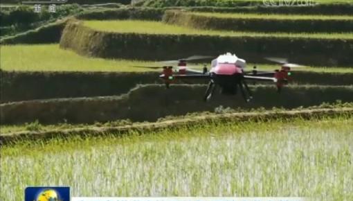 全国春耕进度快于往年 夏粮丰收有基础