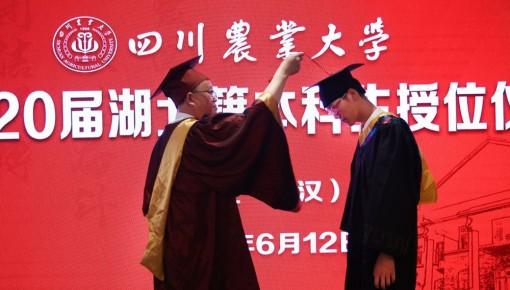 暖心!這所高校千里赴武漢為湖北籍畢業生授學位