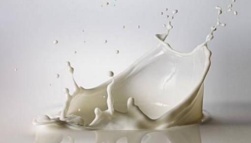 世界牛奶日:我國乳制品消費結構和產品結構應如何優化?