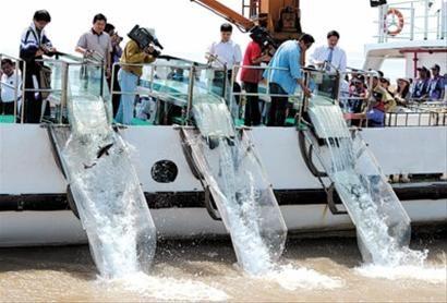 2020年水生生物增殖放流活動在全國范圍同步舉行