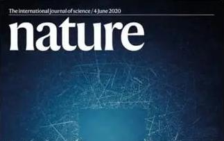 """中國科學家成果登上《Nature》封面!荷葉出淤泥而不染的""""續篇""""來了"""