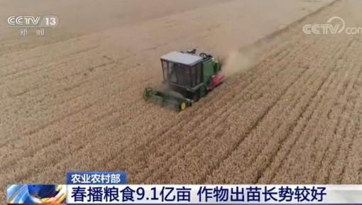農村農業部:5月份農業農村經濟運行持續向好