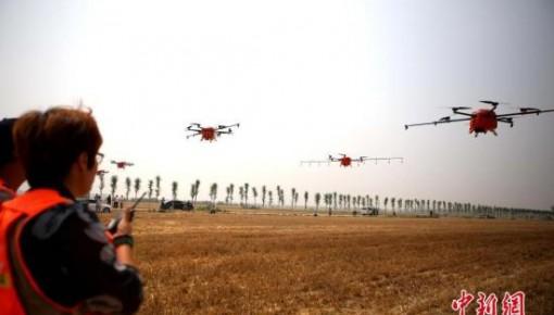 農業農村部:2025年設施種植機械化水平總體達50%以上
