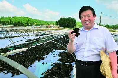 李玉:我怀揣着一个食用菌产业强国的梦想
