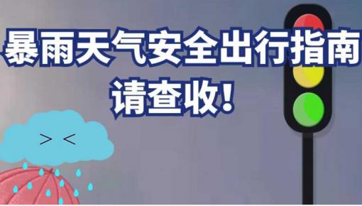 【应急科普】@所有人,这份暴雨天气安全出行指南请查收!