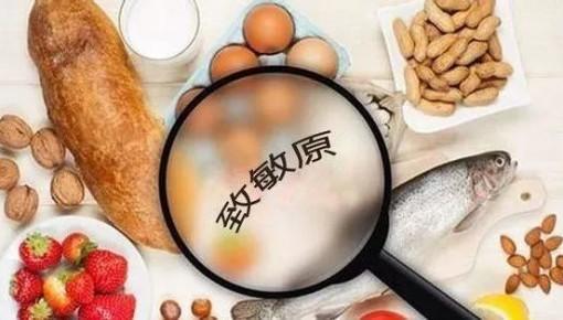 食物過敏危害不亞于毒素 遠離源頭是最好治療方法