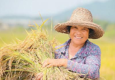 農業運行穩 飯碗端得牢(銳財經·年中經濟觀察③)