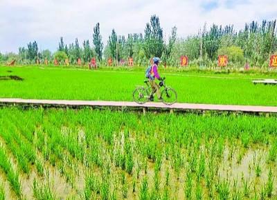 新疆阿克苏温宿县:稻草主题公园让村民腰包鼓起来