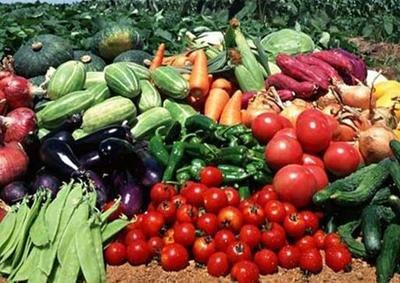 农业农村部:二季度农产品抽检总体合格率97.1% 根菜类全部合格