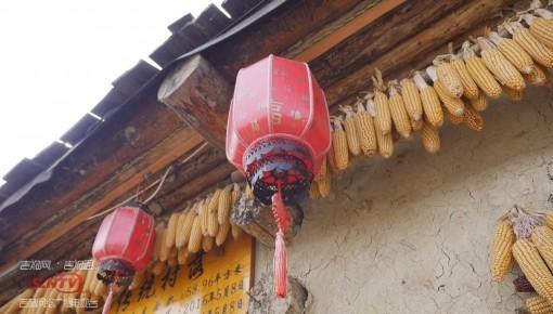 吉林:深化改革促發展 鄉村振興動力噴涌