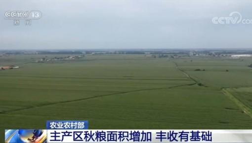 农业农村部:主产区秋粮面积增加 丰收有基础