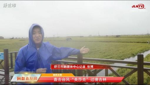 因台风造成主要农作物倒伏灾害的补救措施