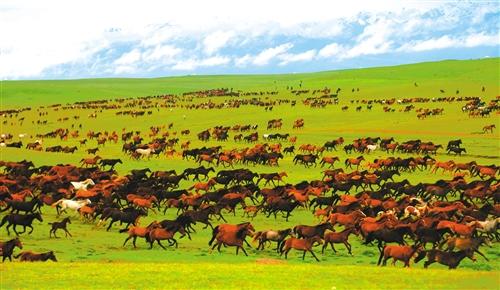 有一种美,叫新疆的美