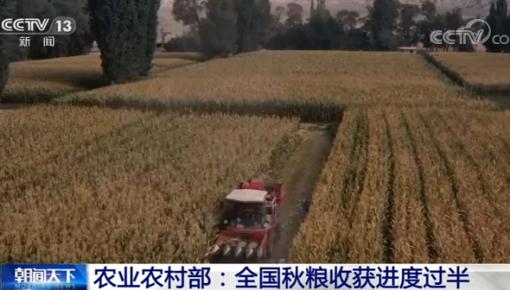 农业农村部:全国秋粮已收50.4% 进度与去年基本持平