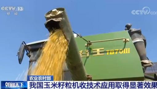 農業農村部:我國玉米籽粒機收技術應用取得顯著效果