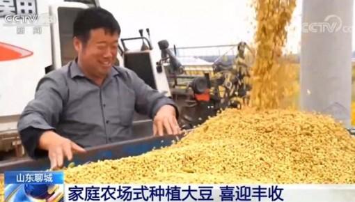 全国多地农作物迎来丰收 大规模机械作业正在陆续展开
