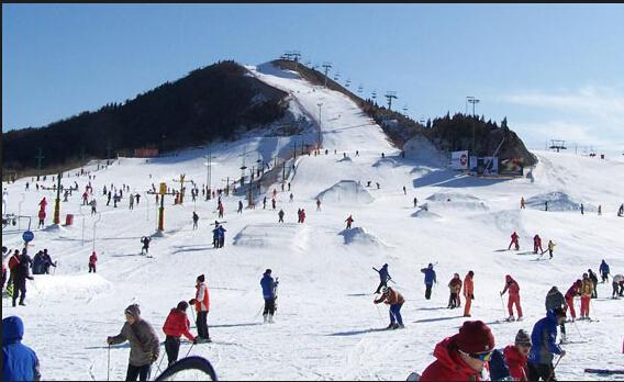 莲花山原始森林风景区山高林密,主峰高达海拔1049米,1000米以上的
