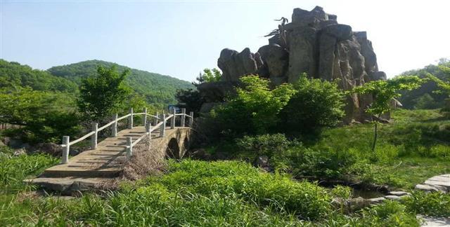 五家山森林公园位于国家级森林公园吉林市朱雀山经济开发区境内,距